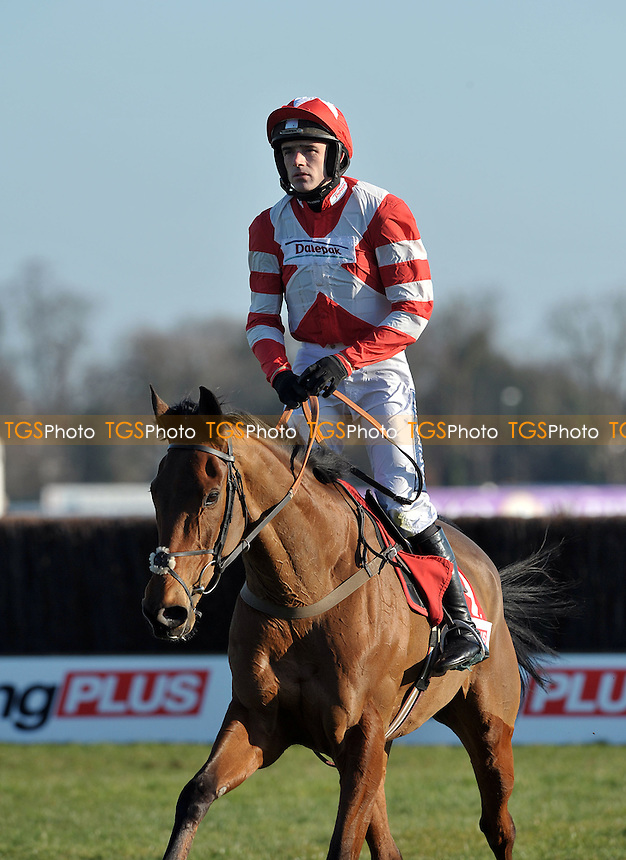 Ruby Walsh riding Michel Le Bon after the Racing Plus Chase (Handicap) Grade 3 Cl1 3m - Horse Racing at Kempton Park, Sunbury, Midddlesex - 25/02/2012 - MANDATORY CREDIT: Martin Dalton/TGSPHOTO - Self billing applies where appropriate - 0845 094 6026 - contact@tgsphoto.co.uk - NO UNPAID USE.