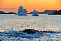 Icebergs floating in Salvage Bay of the Atlantic Ocean at sunset<br /> Eastport<br /> Newfoundland &amp; Labrador<br /> Canada