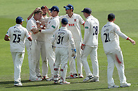 Sam Cook of Essex is congratulated on taking the wicket of Darren Stevens during Kent CCC vs Essex CCC, Specsavers County Championship Division 1 Cricket at the St Lawrence Ground on 20th August 2019