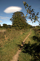 Trail through countryside in the summer. North Yorkshire, England. September 2007.