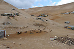 ISRAEL Jahalin encampment, West Bank<br /> Overview of an unrecognized Bedouin encampment of the Jahalin tribe, located below the Palestinian town of Al-Azariyeh, in a West Bank area under Israeli control.