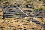 Black volcanic soil farmland on hillside, near Haria, Lanzarote, Canary Islands, Spain