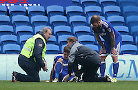 Rhys Healey of Cardiff City is seen to by medical staff during the Sky Bet Championship match between Cardiff City and Rotherham United at the Cardiff City Stadium, Wales, UK. 18 February 2017