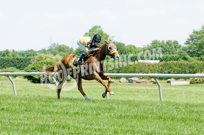 Maryland Mystique winning at Delaware Park on 5/31/12