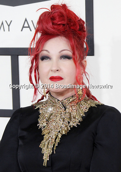Pictured: Cyndi Lauper<br /> Mandatory Credit &copy; Frederick Taylor/Broadimage<br /> 56th Annual Grammy Awards - Red Carpet<br /> <br /> 1/26/14, Los Angeles, California, United States of America<br /> <br /> Broadimage Newswire<br /> Los Angeles 1+  (310) 301-1027<br /> New York      1+  (646) 827-9134<br /> sales@broadimage.com<br /> http://www.broadimage.com