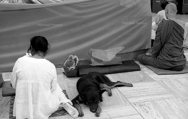12.2010 Bodhgaya (Bihar)<br /> <br /> Inside the Mahabodhi temple,dog laying down in the middle of pilgrims praying and meditating near the buddha tree.<br /> <br /> Dans le Mahabodhi temple ,chien allong&eacute; au milieu des p&egrave;lerins en train de m&eacute;diter et prier pr&egrave;s de l'arbre du bouddha.