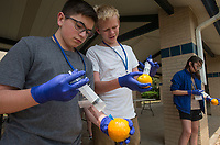 NWA Democrat-Gazette/BEN GOFF @NWABENGOFF<br /> Lathan Smalley (from left), 14, of Rogers, Max Templeton, 12, of Bentonville and Emily Bridges, 13, of Rogers practice cleaning a wound using an orange as a patient Thursday, June 7, 2018, during Wilderness First Aid training at Rogers New Technology High. The Wednesday through Saturday session also includes CPR and automatic external defibrillator training. The training was sponsored by Rogers Public Schools and was open to students and educators from outside the school district.