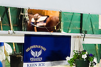 HALLANDALE, FL - JANUARY 27: Keen Ice Saddle Cloth hangs on rail, as Keen Ice stands in Stall, at Gulfstream Park Race Course on January 27, 2017 in Hallandale Beach, Florida. (Photo by Douglas DeFelice/Eclipse Sportswire/Getty Images)