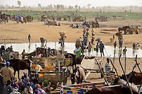 MALI Menschen kommen zum Markttag in Djenne / MALI people come for the market day in Djenne