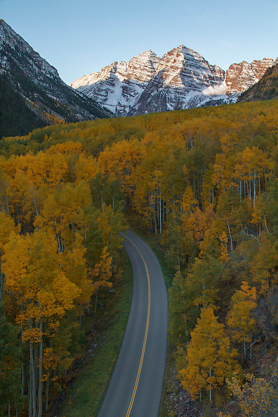 Maroon Valley Road lined with autumn Aspen trees with the Maroon Bells Peaks, Aspen, Colorado
