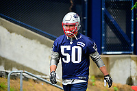 June 6, 2017: New England Patriots defensive end Rob Ninkovich (50) walks to practice in the rain at the New England Patriots mini camp held on the practice field at Gillette Stadium, in Foxborough, Massachusetts. Eric Canha/CSM