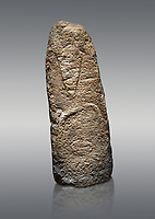 Late European Neolithic prehistoric Menhir standing stone with carvings on its face side. The representation of a stylalised male figure starts at the top with a long nose from which 2 eyebrows arch around the top of the stone. below this is a carving of a falling figure with head at the bottom and 2 curved arms encircling a body above. Excavated from Paule Luturru,  Samugheo. Menhir Museum, Museo della Statuaria Prehistorica in Sardegna, Museum of Prehoistoric Sardinian Statues, Palazzo Aymerich, Laconi, Sardinia, Italy. Grey background.