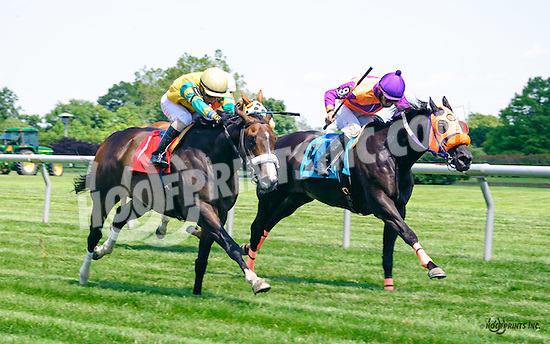 Guts and Glory winning at Delaware Park on 6/18/16