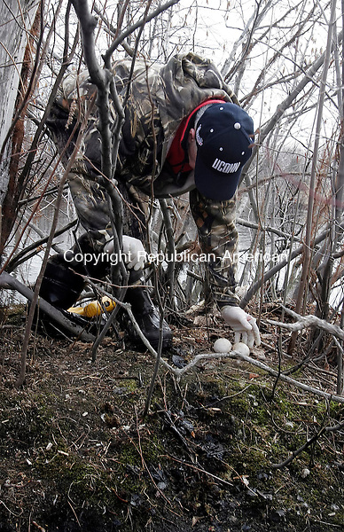 CHESHIRE, CT-24 March 2006-032406TK07- Bob Elst of the Cheshire Recreation Park Department reach for a pair of Canadian Geese eggs that to perform a addling process that will neutralize the hatching process.    Tom Kabelka Republican-American (Bob Elst)