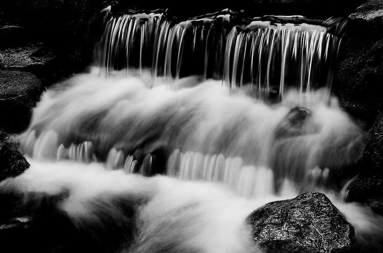 Fern Springs , Yosemite 2017, Ilford Delta Film