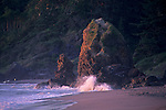 Sunset on coastal rock at Trinidad Beach, Trinidad, Humboldt County, CALIFORNIA