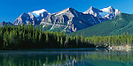 Banff National Park, Alberta, Canada    <br /> Mounts Temple and Lefroy of the Bow Range in morning sun reflected on Herbert Lake in the Canadian Rockies