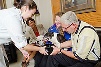 Dr. Katherine Gerken and owner Rocky Sullivan offer water to patient Mitsy while Julie Burt and class of 2015 student Courtney Brown look on.