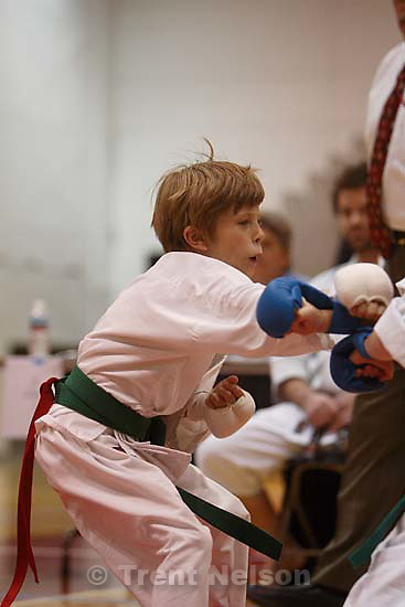 Nathaniel Nelson in Utah Open Karate Tournament<br />