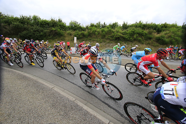 Riders including Martin Elmiger (SUI) IAM Cycling pass through Segre during Stage 3 of the 2016 Tour de France, running 223.5km from Granville to Angers, France . 4th July 2016.<br /> Picture: Eoin Clarke | Newsfile<br /> <br /> <br /> All photos usage must carry mandatory copyright credit (&copy; Newsfile | Eoin Clarke)