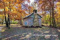 63895-16607 Cabin at Log Cabin Village in fall Kinmundy IL