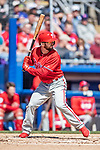 6 March 2019: Philadelphia Phillies outfielder Shane Robinson at bat during a Spring Training game against the Toronto Blue Jays at Dunedin Stadium in Dunedin, Florida. The Blue Jays defeated the Phillies 9-7 in Grapefruit League play. Mandatory Credit: Ed Wolfstein Photo *** RAW (NEF) Image File Available ***