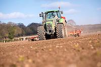 Drilling spring malting barley after sugar beet - Norfolk, March