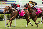 04 November 2018 -HKJC Horse Racing 2018-19
