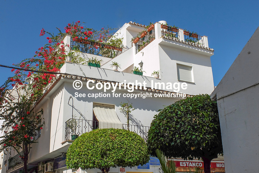 Roof garden, house, San Pedro de Alcantara, Marbella, Malaga, Andalucia, Espana, Spain, October, 2018, 201810072415<br />
