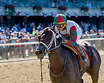 ELMONT, NY - JULY 09: Firenze Fire #7, ridden by Irad Ortiz, Jr., wins the Dwyer Stakes during the Stars and Stripes Racing Festival  at Belmont Park on July 7, 2018 in Elmont, New York. (Photo by Scott Serio/Eclipse Sportswire/Getty Images)