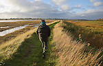 Woman walking on the flood defence wall footpath of the River Deben, Ramsholt, Suffolk, England