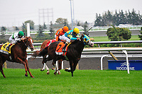 Next Question(7) with Jockey Ramon A. Dominguez aboard.wins the Nearctic Stakes (Grade 1) at Pattison Canadian International  in Toronto, Canada on October 14, 2012.
