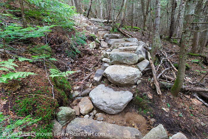 July 2015 - Erosion (and the first step is being undermined) next to stone steps along the Mt Tecumseh Trail in Waterville Valley, New Hampshire. The impact on the left side is from the building of the stairs. When this photo was taken, this staircase was only a year or two old.