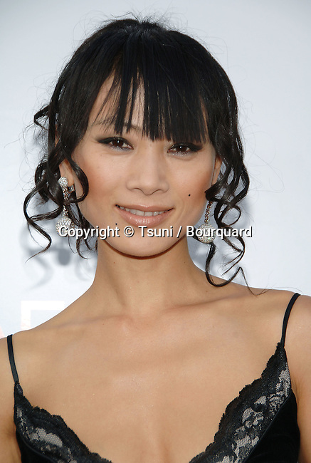 Bai Ling arriving at the AFI Honoring Sean Connery At The Kodak Theatre in Los Angeles. June, 8, 2006.