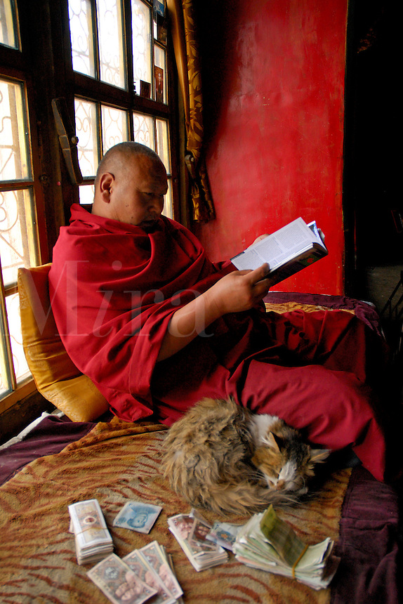 Buddhist Gelugpa monk with his cat and donated money, looks at my travel guide, Drepung monastery, Lhasa, Tibet, China.