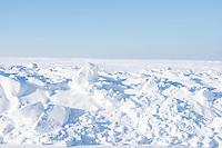 Desolate Minnesota winter landscape.