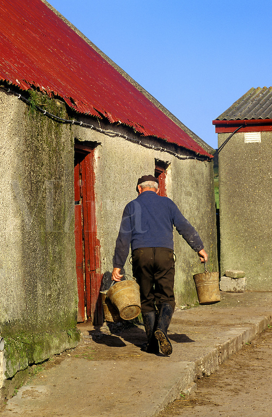 Irish farmer on his way to milk the cows, County Kerry, Ireland