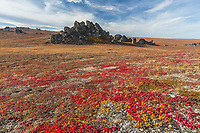 Bering Land Bridge National Preserve, Seward Peninsula, Alaska.