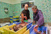 Europe/France/Bretagne/56/Morbihan/Vannes: Vincent David  chef du restaurant: Le Pressoir à Saint-Avé, fait ses courses sur le marché de Vannes à la halle aux poissons au banc de la Poissonnerie Daniel Guillaume [Non destiné à un usage publicitaire - Not intended for an advertising use]