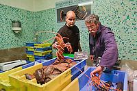 Europe/France/Bretagne/56/Morbihan/Vannes: Vincent David  chef du restaurant: Le Pressoir à Saint-Avé, fait ses courses sur le marché de Vannes à la halle aux poissons au banc de la Poissonnerie Daniel Guillaume [Non destiné à un usage publicitaire - Not intended for an advertising use]