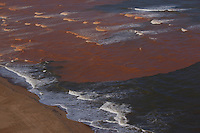 A lama trazida pelo rio Doce chega ao litoral do Espirito Santos.<br /> Espirito Santos, Brasil.<br /> Foto Marcello Louren&ccedil;o<br /> 22/11/2015<br /> <br /> <br /> <br /> A lama trazida pelo rio Doce chega ao litoral do Espirito Santos.<br /> Espirito Santos, Brasil.<br /> Foto Marcello Louren&ccedil;o<br /> 22/11/2015<br /> <br /> A lama mudou a cor da &aacute;gua do Rio Doce na praia de Reg&ecirc;ncia, onde o rio des&aacute;gua no mar, em Linhares, Norte do Esp&iacute;rito Santo, na tarde deste s&aacute;bado (21). Por volta das 16h, a &aacute;gua come&ccedil;ou a ficar na tonalidade marrom. Uma barreira de 9 km foi montada para proteger a fauna e flora na regi&atilde;o e amenizar os impactos da lama.<br /> O Servi&ccedil;o Geol&oacute;gico do Brasil informou que n&atilde;o tem previs&atilde;o para que a parte mais densa dos rejeitos de minera&ccedil;&atilde;o da barragem da Samarco, cujos donos s&atilde;o a Vale e a anglo-australiana BHP Billiton, chegue &agrave; foz.<br /> A lama est&aacute; em tr&ecirc;s munic&iacute;pios do estado: Linhares, que n&atilde;o usa as &aacute;guas do Rio Doce para abastecimento da cidade. Baixo Guandu, que passou a usar as &aacute;guas do Rio Guandu. E Colatina, que h&aacute; quatro dias parou de usar a &aacute;gua do rio.<br /> O rompimento de uma barragem de rejeitos de min&eacute;rio aconteceu no dia 5 de novembro e causou uma enxurrada de lama no distrito de Bento Rodrigues, em Mariana, na regi&atilde;o Central de Minas Gerais