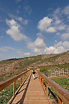 Mount Carmel. Hai-Bar Carmel Nature Reserve