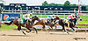 In The Rough winning at Delaware Park on 6/15/13