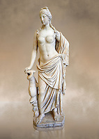 Full length frontal view of 2nd - 1st century BC Roman marble sculpture of Aphrodite (Venus), 'Marine Venus' Type with a dolphin, copied from a Hellanistic Greek original,  inv 6296, Museum of Archaeology, Italy