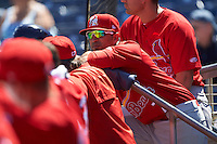 Palm Beach Cardinals manager Oliver Marmol (7) during a game against the Charlotte Stone Crabs on April 10, 2016 at Charlotte Sports Park in Port Charlotte, Florida.  Palm Beach defeated Charlotte 4-1.  (Mike Janes/Four Seam Images)