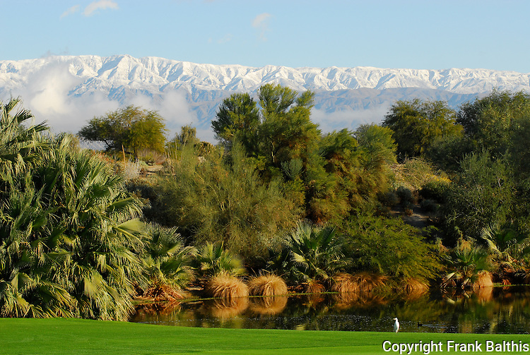 Desert Willow GOlf Course in Palm Desert