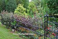 65821-00304 Iron fence and flowers at Montrose Gardens Hillsborough, NC