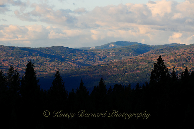 Sun rising on the Kootenai National Forest in Montana.