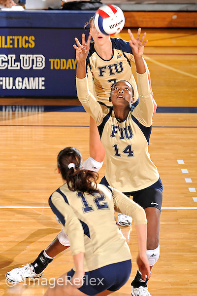 11 September 2011:  FIU setter Renele Forde (14) sets the ball in the second set as the FIU Golden Panthers defeated the Florida A&M University Rattlers, 3-0 (25-10, 25-23, 26-24), at U.S Century Bank Arena in Miami, Florida.
