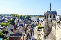 France, Indre-et-Loire (37), Amboise, château d'Amboise, chapelle Saint-Hubert, la ville en bas et la Loire